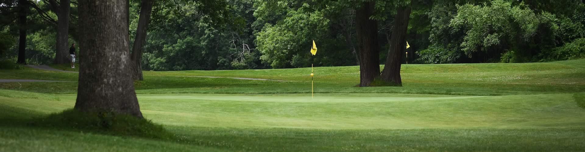 Image result for spring golf
